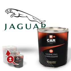 Peinture Jaguar Brillant Direct Polyuréthane