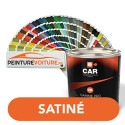 Peinture RAL Satiné Direct